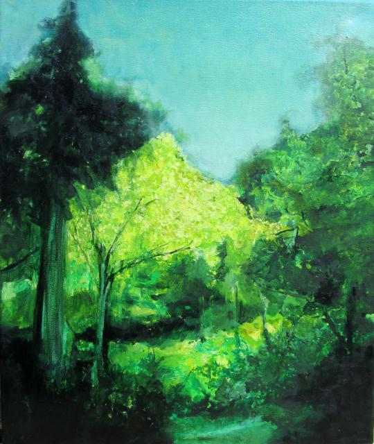 for Paysage vert
